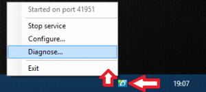 DLS icon and context menu (Windows)